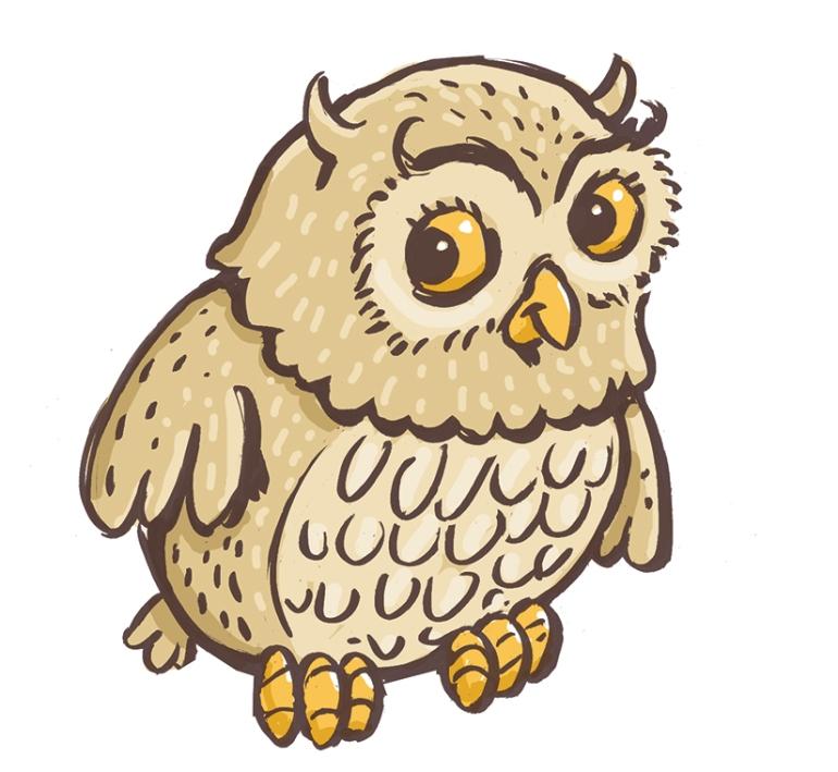 owl-design2