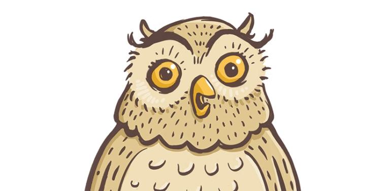 owl-design3-no2
