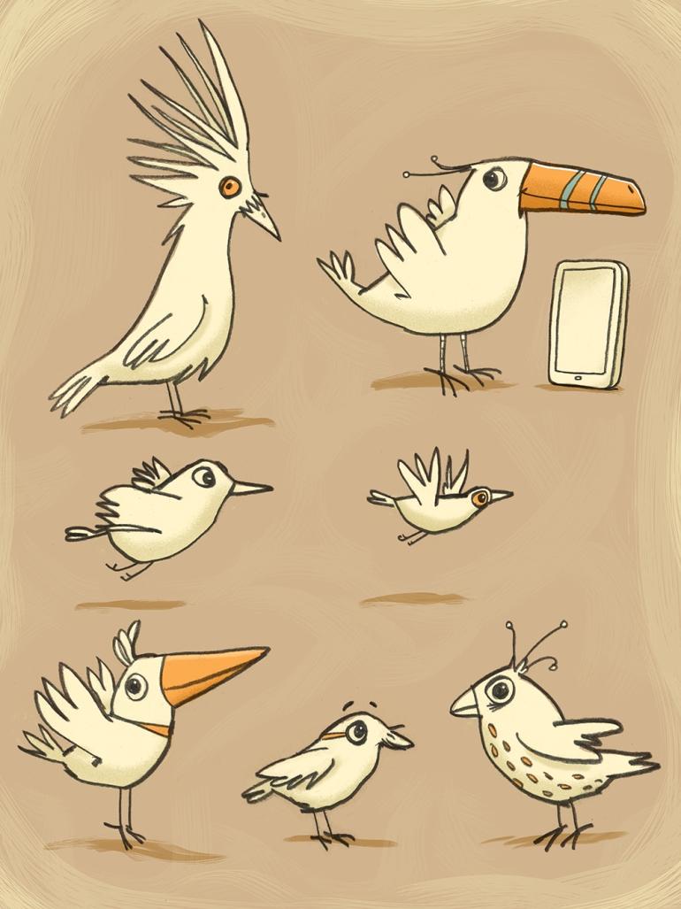 birds-new4