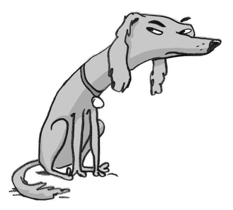 dog-no4